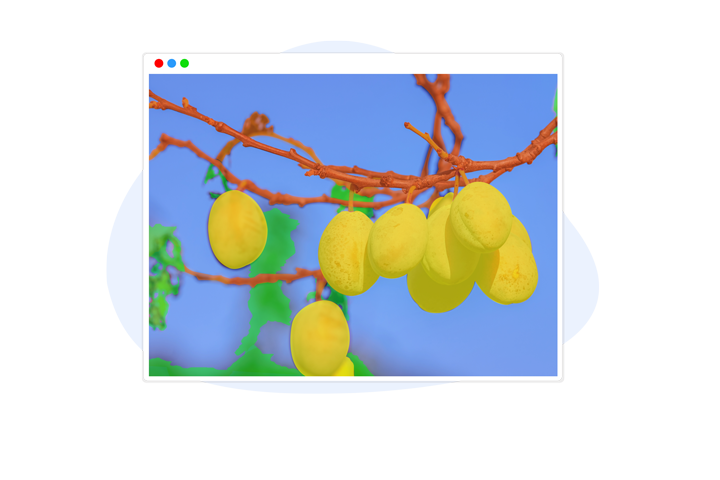Agriculture Image Annotation